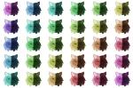 ColouredWolves 2